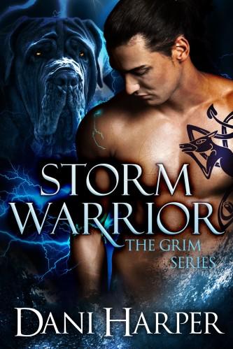 basic storm warrior_Front