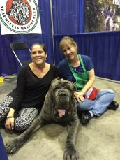 At the Meet the Breed booth at Eukanuba in Orlando